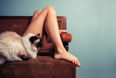 Do Dogs & Cats Know When I'm Naked?