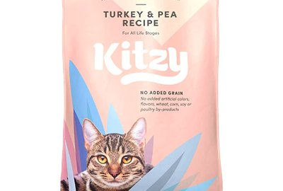 The Best Dry Cat Foods