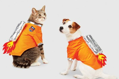Cuteness Picks: 8 Pet Costumes That Will Win Halloween