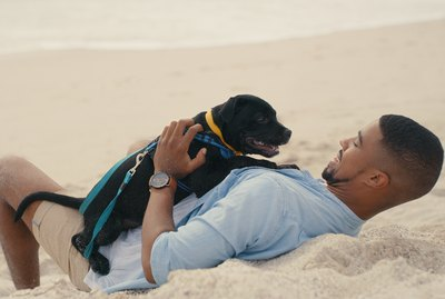 The Best Swimming & Water Gear for Dogs