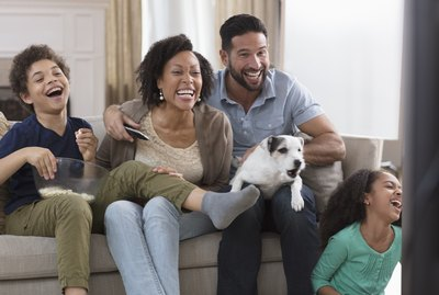 Why Do Dogs Bark at Animals on TV?