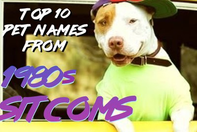 132 Pet Names From 1980s Sitcoms