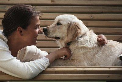 Dog Care Checklist