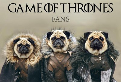 Top 80 Pet Names For Game Of Thrones Fans