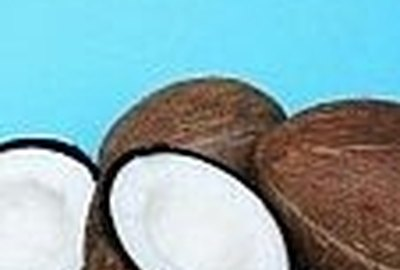 How to Use Coconut Oil for Fleas, Sores and Coat Problems on Your Pet