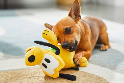 10 Disney Dog Toys That Are Paw-sitively Perfect for Your Pup