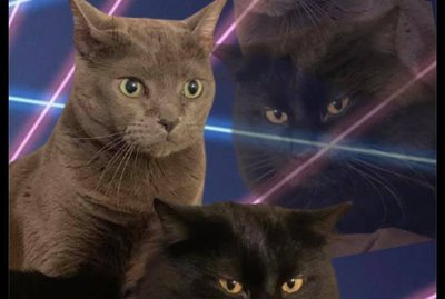 People Are Photoshopping Cats Into Those School Portraits With Laser Backgrounds & We Can't Stop Laughing