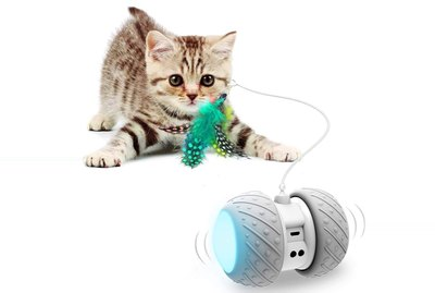 Amazon Prime Day 2021: The Best Deals on Cat Products
