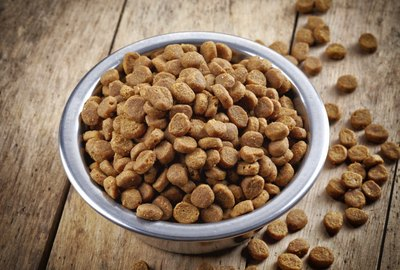 List of Gluten-Free Dog and Cat Foods
