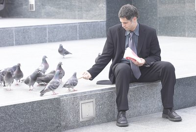 What Do Pigeons Like to Eat?