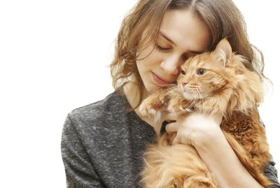 The Pros & Cons of Having a Pet Cat