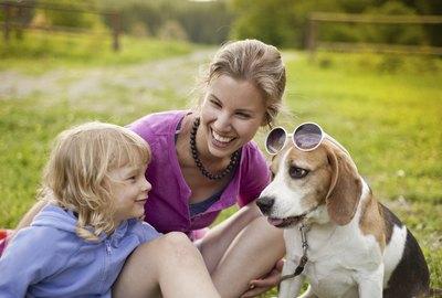 Top 10 Kid Friendly Dog Breeds