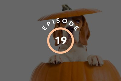 Episode 19: Is Your Pet Basic If They Like Pumpkin Spice?