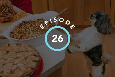 Episode 26: The Silliest Things Pets Do During The Holidays