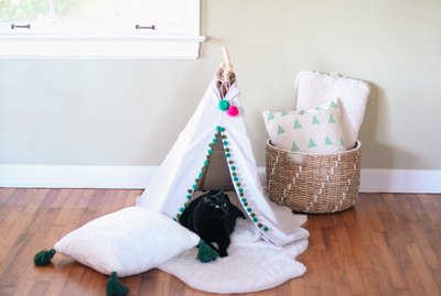 Make This No-Sew Pet Tent For Less Than $20
