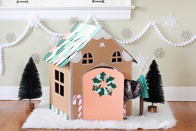 How To Make A Festive Cardboard Gingerbread House For Your Pets Using Old Boxes
