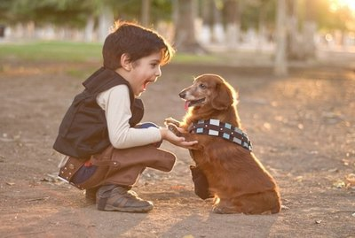 117 Star Wars-Inspired Dog Names