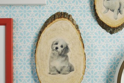How To Make A Sparkly Wood Portrait Of Your Pet
