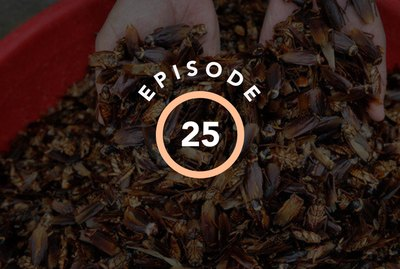 Episode 25: Which Bugs Scare You The Most?