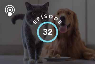 Episode 32: Are Cats Better Pets Than Dogs?