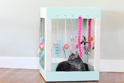 Make A Kitty Playplace Out Of A Box