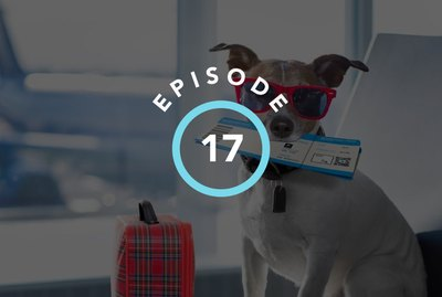 Episode 17: How To Travel With Cats & Dogs
