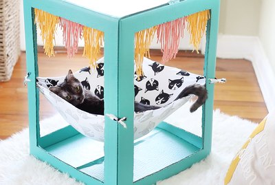 How To Make A Chic Cat Hammock From A Cardboard Box