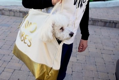 How To Turn A Tote Bag Into A Pet Tote
