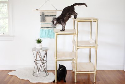 Make A Modern Cat Tree Out Of PVC Pipe