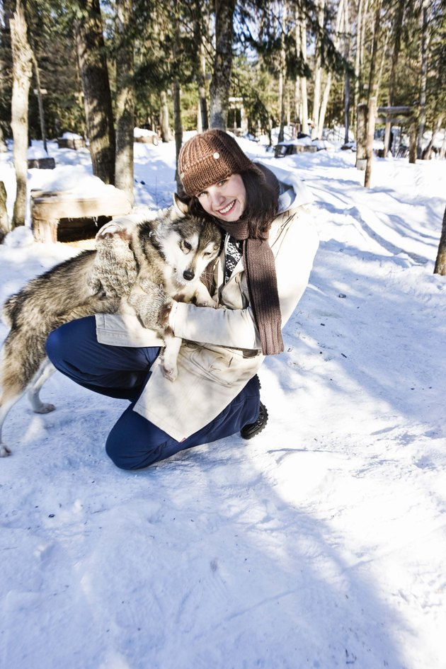 Woman with sled dog outdoors during winter