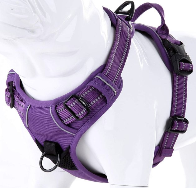 Purple Juxzh Truelove Soft Front Dog Harness