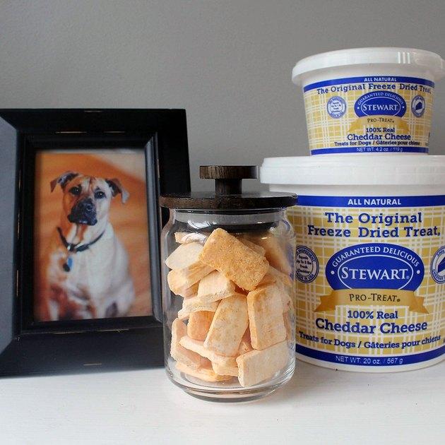 Stewart Cheddar Cheese Dog Treats