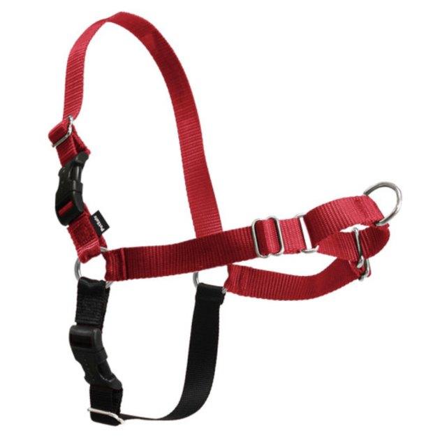 Red PetSafe Easy Walk Dog Harness