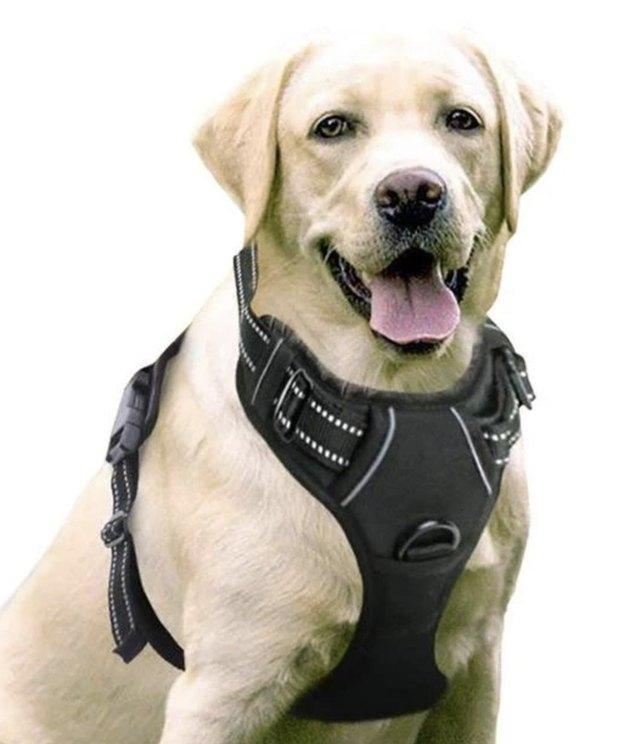 Black Rabbitgoo Dog Harness No-Pull Pet Harness