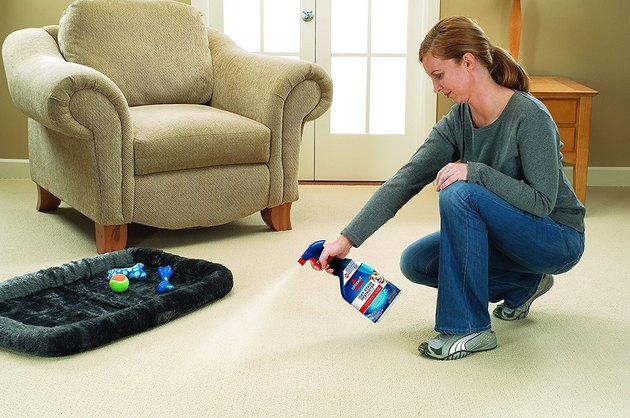 woman using Bissell Oxy Stain Destroyer spray on carpet