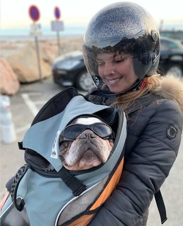 A French bull dog in sunglasses is carried in a backpack by a women in a motorcycle helmet.