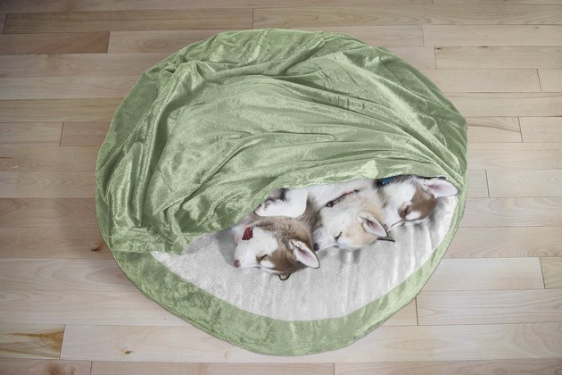 dogs snuggled up in FurHaven Microvelvet dog bed