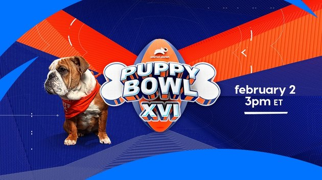 Puppy Bowl 16