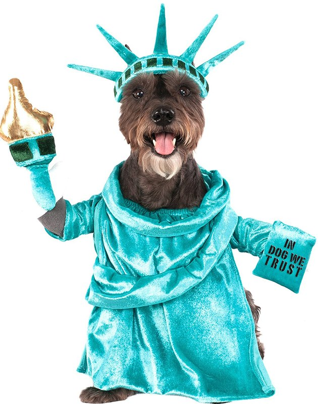 Statue of Liberty Halloween costume for dogs