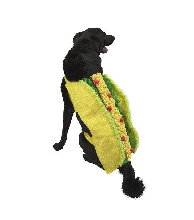Taco Halloween costume for dogs