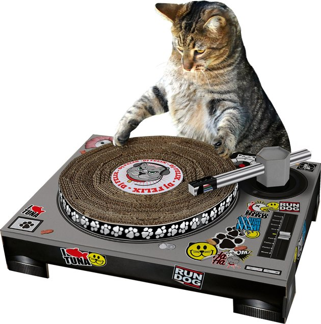 turntable-shaped scratch pad for cats