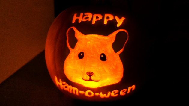 Jack'o'lantern with a hamster's face carved into it.
