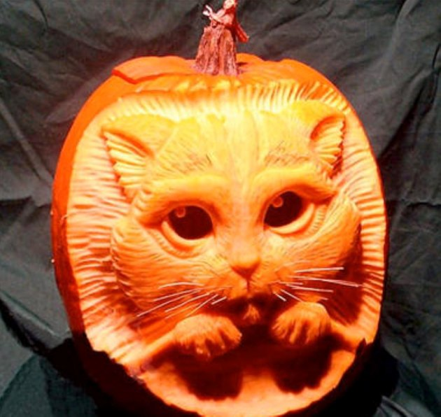 Jack'o'lantern with a cat face carved into it..
