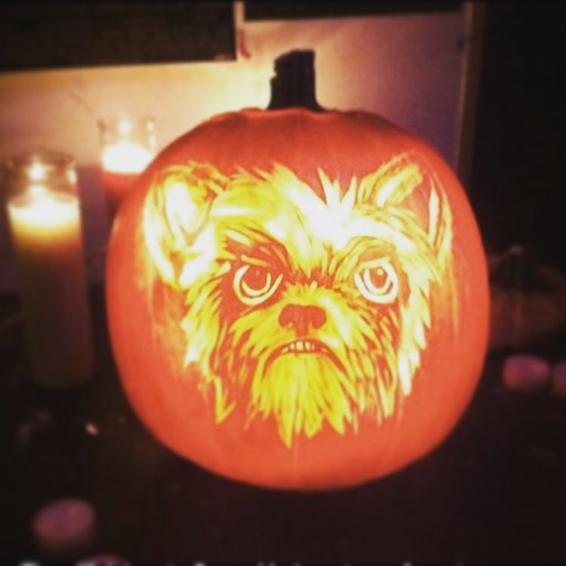 Jack'o'lantern with a dog's face carved into it..
