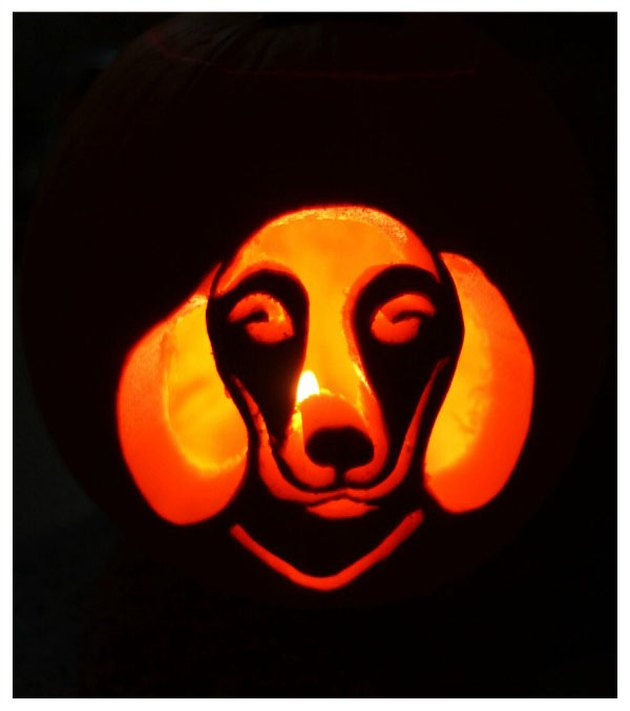 Jack'o'lantern with a dog's face carved into it.