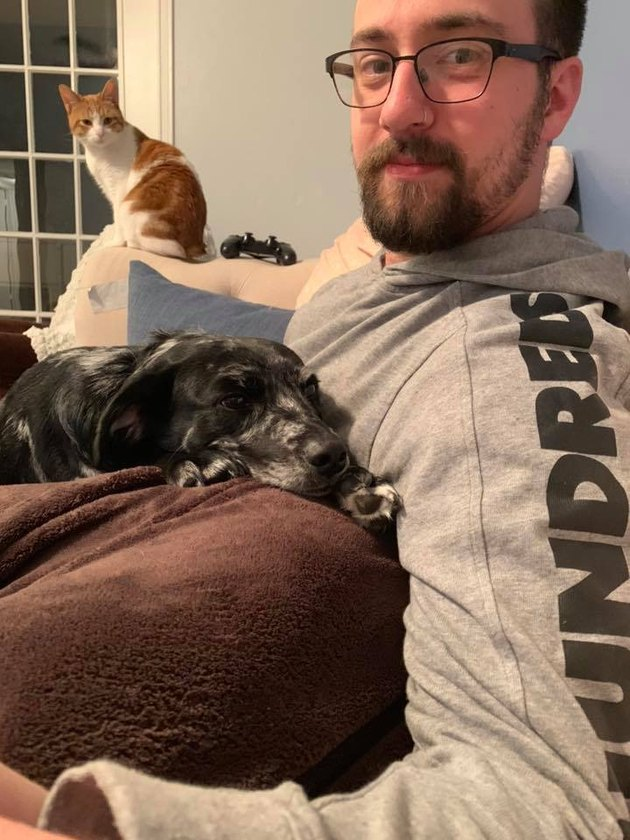 dog gets around no couch rule by laying on human dad