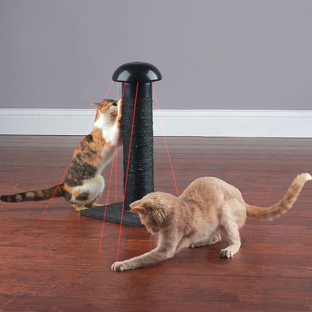 cat scratching post with lasers built in