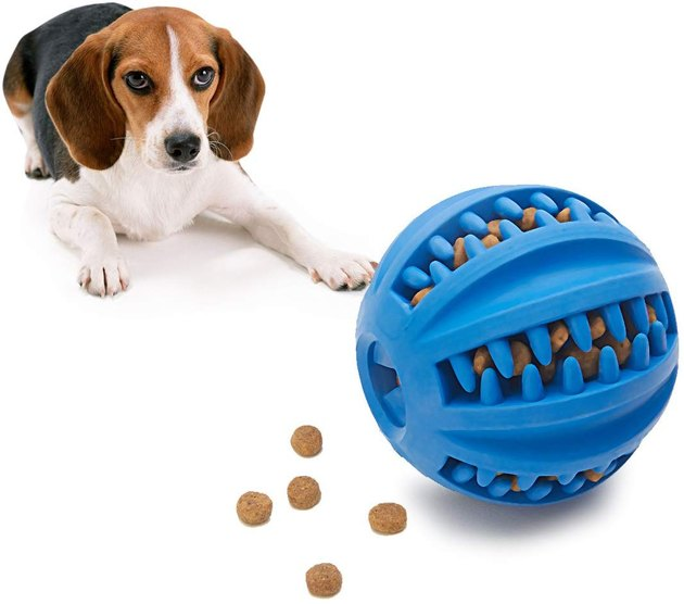 IQ treat ball for good boys and smart dogs