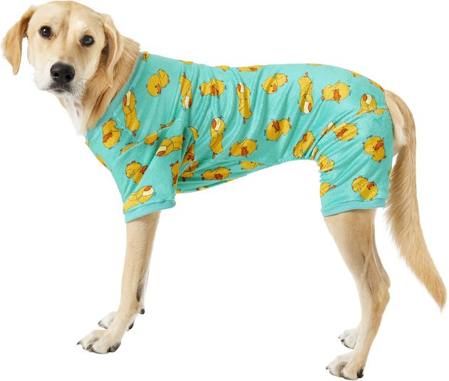 Golden retriever wearing duck pajamas