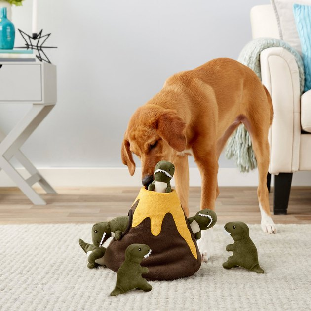 Dog plays with plush volcano dino puzzle toy